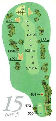 Map of Hole 15