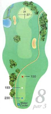 Map of Hole 8